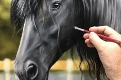 Pintura-de-um-Cavalo-Frisio-OST-60-x-90-cm-por-Elton-Brunetti-2