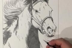 Pintura-de-um-cavalo-Paint-Horse-por-Elton-Brunetti-04