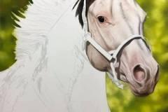 Pintura-de-um-cavalo-Paint-Horse-por-Elton-Brunetti-08