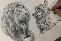 Curso-de-Desenho-de-Felinos-por-Elton-Brunetti-11