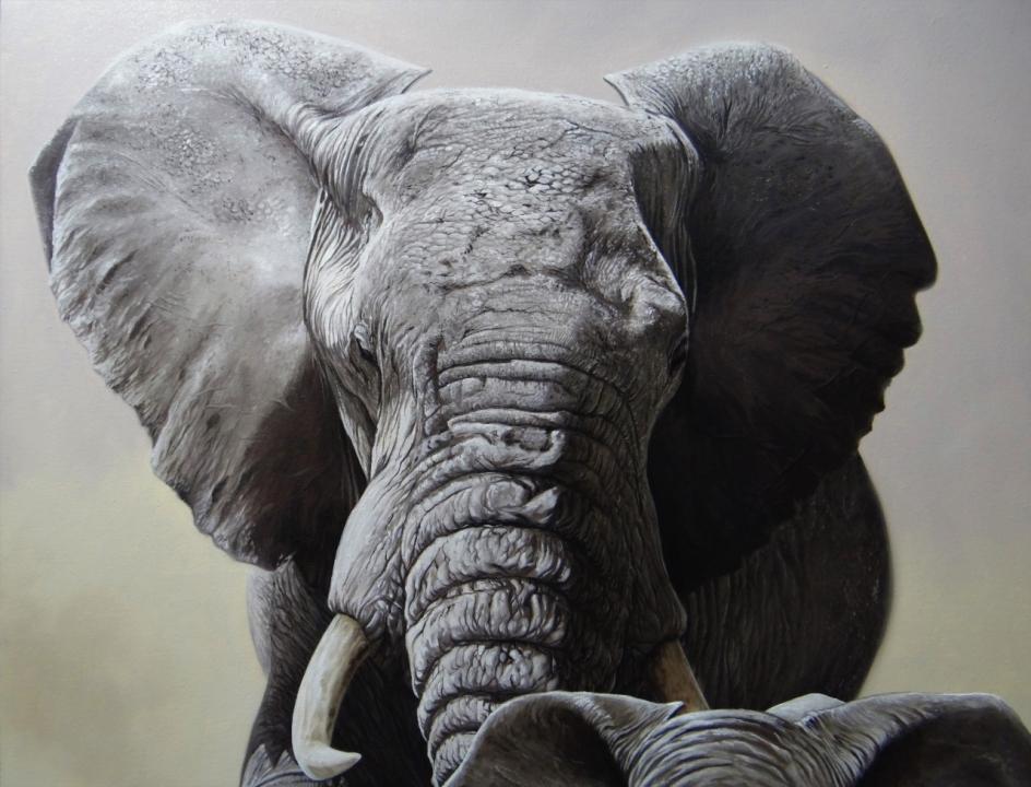 elefante-01