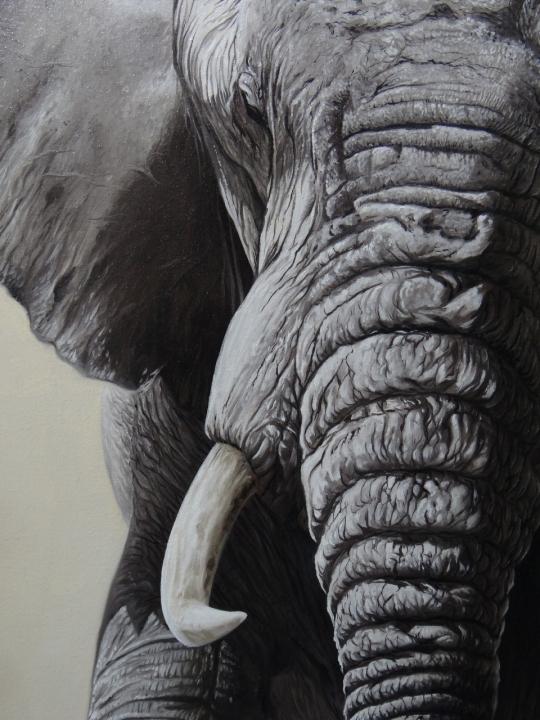 elefante-02