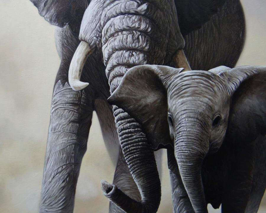 elefante-03