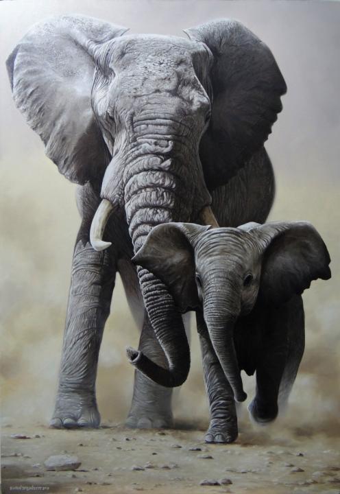 elefante-04