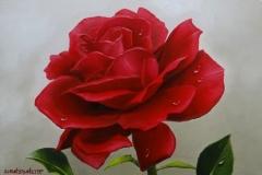 Rosa-Vermelha-Óleo-Sobre-Tela-Elton-Brunetti