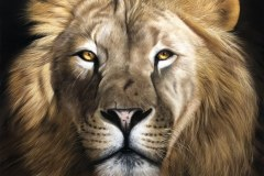 tela-1-pintura-de-um-leao-curso-de-desenho-e-pintura-de-felinos-Elton-Brunetti-img-01