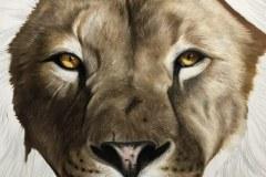 tela-1-pintura-de-um-leao-curso-de-desenho-e-pintura-de-felinos-Elton-Brunetti-img-03