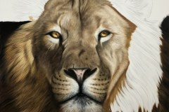 tela-1-pintura-de-um-leao-curso-de-desenho-e-pintura-de-felinos-Elton-Brunetti-img-06