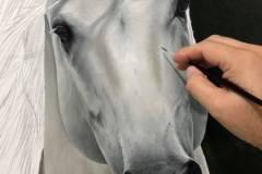 pintura-cavalo-branco-por-elton-brunetti-3