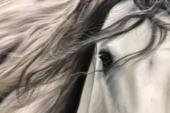 pintura-cavalo-branco-por-elton-brunetti-4