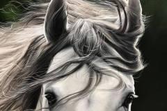 pintura-cavalo-branco-por-elton-brunetti-5