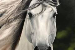pintura-cavalo-branco-por-elton-brunetti