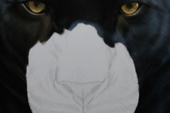 pantera-negra-por-Elton-Brunetti-02