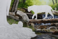 pintura-de-uma-Onca-pintada-60x90-Elton-Brunetti-03