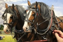 Pintura-cavalos-Clydesdales-arando-a-terra-por-Elton-Brunetti-3