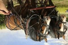 Pintura-cavalos-Clydesdales-arando-a-terra-por-Elton-Brunetti-5