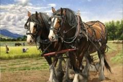 Pintura-cavalos-Clydesdales-arando-a-terra-por-Elton-Brunetti