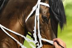 pintura-de-cavalo-por-elton-btunetti-3
