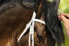 pintura-de-cavalo-por-elton-btunetti-4