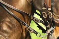 pintura-de-cavalo-por-elton-btunetti-5