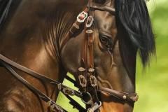 pintura-de-cavalo-por-elton-btunetti