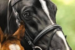 pintura-de-cavalo-e-potro-por-elton-brunetti-2