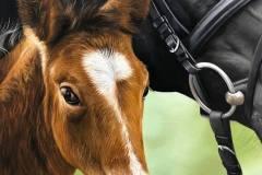 pintura-de-cavalo-e-potro-por-elton-brunetti-5