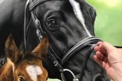 pintura-de-cavalo-e-potro-por-elton-brunetti-6