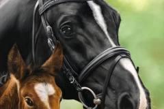 pintura-de-cavalo-e-potro-por-elton-brunetti