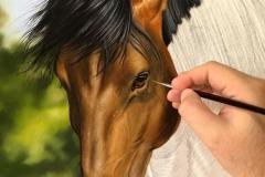 pintura-cavalo-galopando-na-agua-por-elton-brunetti-2