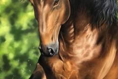 pintura-cavalo-galopando-na-agua-por-elton-brunetti-4