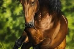 pintura-cavalo-galopando-na-agua-por-elton-brunetti-5