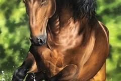 pintura-cavalo-galopando-na-agua-por-elton-brunetti-6