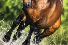 pintura-cavalo-galopando-na-agua-por-elton-brunetti-7
