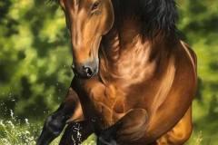 pintura-cavalo-galopando-na-agua-por-elton-brunetti