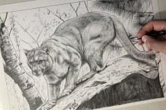 Esboco-da-pintura-Puma-oleo-sobre-tela-70x100cm-por-Elton-Brunetti
