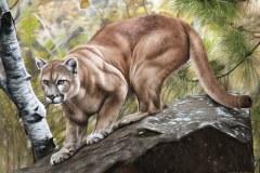 pintura-Puma-oleo-sobre-tela-70x100cm-por-Elton-Brunetti-01