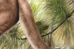 pintura-Puma-oleo-sobre-tela-70x100cm-por-Elton-Brunetti-04