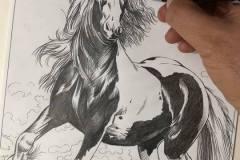 esboco-cavalo-tela-5-elton-brunetti-5