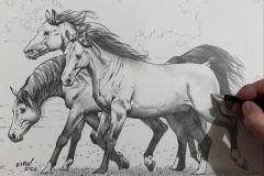 Pintura-de-cavalos-arabes-por-Elton-Brunetti-01