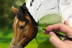 Pintura-de-cavalos-arabes-por-Elton-Brunetti-04