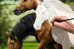 Pintura-de-cavalos-arabes-por-Elton-Brunetti-06