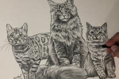 1_desnho-para-quadro-gatos-60x80-cm-Elton-Brunetti
