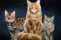 2_quadro-gatos-60x80-cm-Elton-Brunetti
