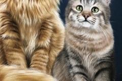 quadro-gatos-60x80-cm-Elton-Brunetti-Detalhes-4
