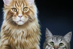 quadro-gatos-60x80-cm-Elton-Brunetti-Detalhes-6