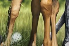pintura-de-um-cavalo-com-cachorro-por-Elton-Brunetti-01