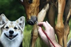pintura-de-um-cavalo-com-cachorro-por-Elton-Brunetti-07