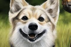pintura-de-um-cavalo-com-cachorro-por-Elton-Brunetti-11