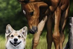 pintura-de-um-cavalo-com-cachorro-por-Elton-Brunetti